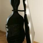 Celloetui bam 1