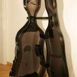 Celloetui bam 2