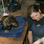 Lena Fischer Luthier