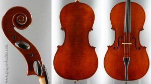 W.D. Fischer Cello 2010