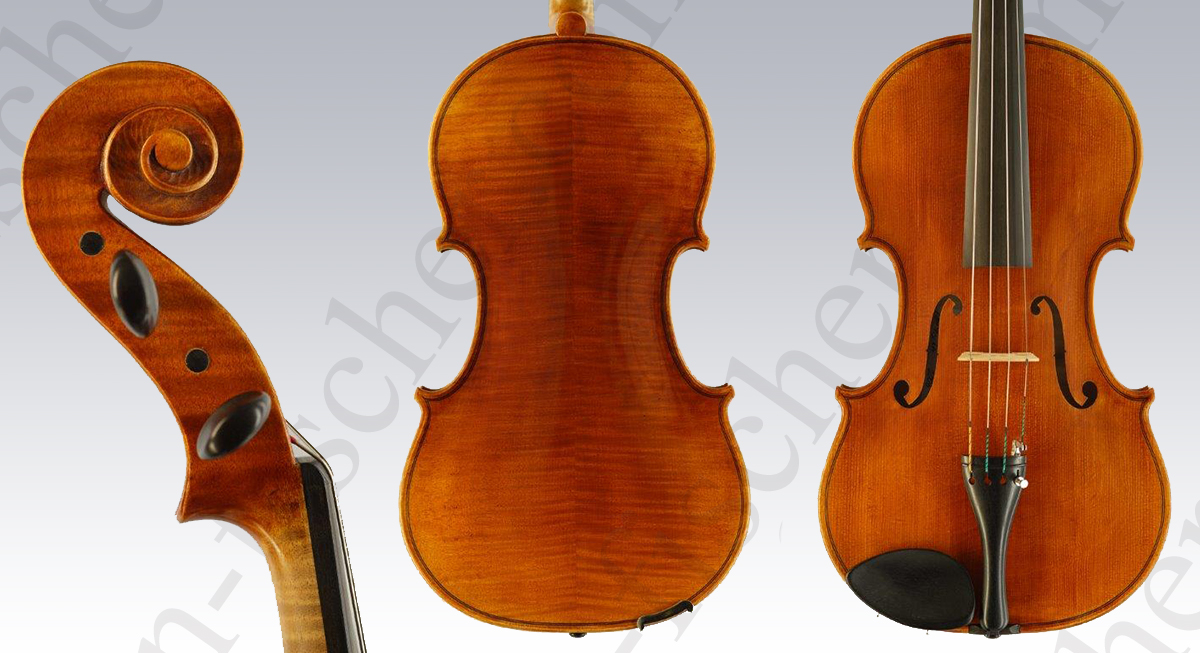 Viola by Lena Fischer