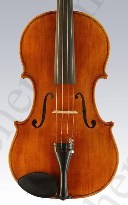 Viola von Lena Fischer